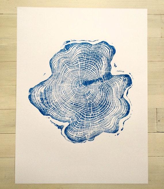 Blue Alaskan Cypress, Original Tree Ring PrintChristmas gift, Thanksgiving art, holiday art, art gifts, Christmas art