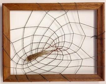 Framed Feather Web, Dream Catcher Web, Mixed Media Art, Original Art, Gift, Turkey Feather, Framed Art, Yarn, Spider Web, Fiber Art
