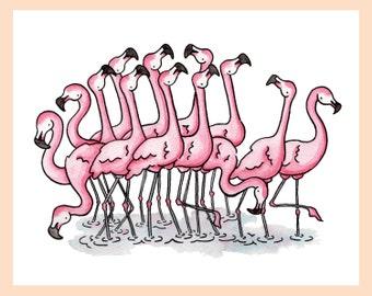 "Flamboyance of Flamingos illustration 8""x10"" mounted print"
