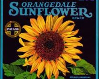 Sunflower Orange Crate Label