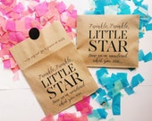 Gender Reveal Confetti Bags (Set of 4+ bags) - twinkle twinkle