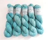Sock Yarn Superwash Merino/Nylon 4ply Handdyed Yarn: FROZEN