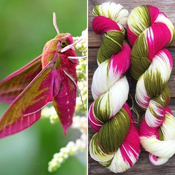 Elephant Hawkmoth, hand-dyed variegated wildlife theme soft 75/25 merino nylon blend sock yarn