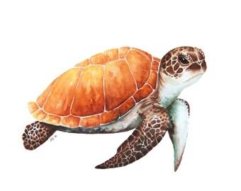 Watercolor Sea Turtle, Standard Art Print, Sea Turtle Painting, Sea Turtle Art, Hawksbill Sea Turtle, Painting, Watercolor Painting