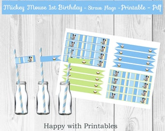 Mickey Mouse 1st bday Straw Flags - Mickey Mouse straw flags - 1st bday mini flags - Mickey Mouse party - Mickey Mouse 1st mini flags