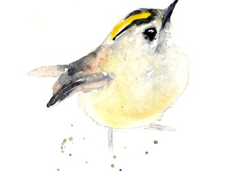 Goldcrest Feb 2016 Signed Limited Edition Archival Print of my own watercolour painting