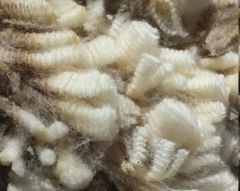 East Friesian Raw Wool Fleece or Washed Wool Fleece