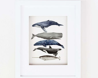 Matted 11x14 Watercolor Whale Stack Print