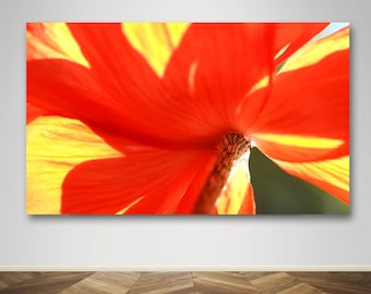 Photograph - Macro Orange Yellow and Red Poppy Rays of Sunshine Flower Fine Art Photography Print Wall Art Home Decor