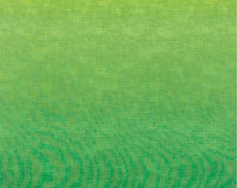 1/2 yard ofTimeless Treasure Studio Ombre Green fabric C4700