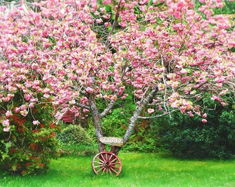 Cherry Blossom Art, Cherry Tree, Wagon Wheel, Pastoral Painting, Pink and Green Art, Tree Print, Spring Wall Art, Spring Decor, Springtime