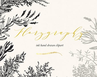 Florygraphy. Ink hand drawn clipart. Black and gold. Elegant and original Calligraphy style logo, invitation, blog. Watercolor clipart.
