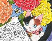 Fantasy Fairy Cats Colori...