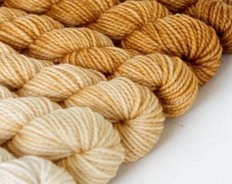 WHEATEN 240 yard gradient yarn mini-skein set, American Sock, superwash, merino, fingering weight, sock yarn, gradient, ombre