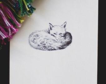 sleepy fox on monday
