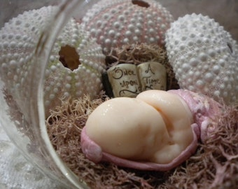 Glass Orb Terrarium Fairy Garden