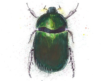 Sam Fellman Art Magnet Beetle (A6)