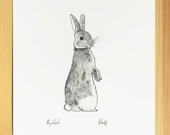 Little Rabbit Sketch - Print