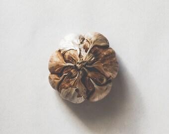 Kitchen Art - Square print, food photography, rustic, garlic, home decor, photographic art print, minimalist, wall art, wall decal.