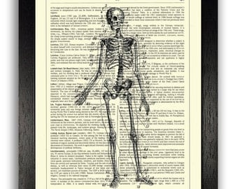 ANATOMICAL ART Skeleton Human Anatomy Print Poster 8 x 10, Anatomical Drawing Illustration Artwork, Home Decor Print, Vintage Person Drawing