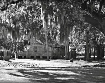 ACADIAN CABIN in Black and White ~ Cajun Decor ~ Creole Cottage ~ Plantation homes ~ Fine Art Photography ~ Louisiana Photography