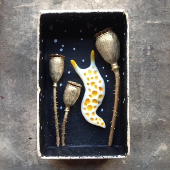 Poppy Seed Pods And Polymer Clay Slug Matchbox Art Miniature
