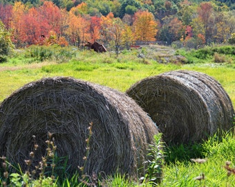 Art, Landscape Photography, Autumn, Hay, Leaves, Fall, Country, Manchester, Vermont, October