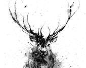 Deer, Deer Head, Animal Art Print, Deer Art, Black and White Animal Art, Wildlife Art, Black And White Art, Minimalist Art, Reindeer Art