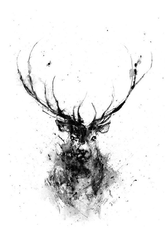 Deer Deer Head Animal ...