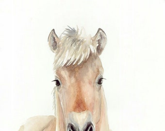 Baby Horse - Print