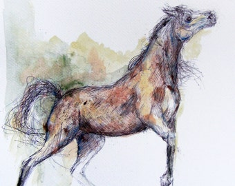 Still free horse- watercolor