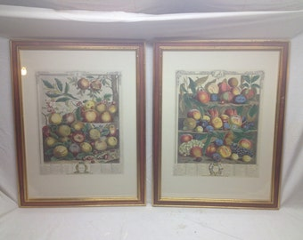"""Pair of Rob Furber Gardnier at Kensington 1732 Colored Etchings - Vintage Engraving Hand Colored Frames Total Size 26.5"""" x 20.5"""""""