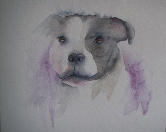 Staffordshire Bull Terrier watercolour painting