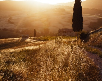 Tuscany Photograph, Tuscany Italy Art, Landscape Photography, Italian Wall Art, Tuscan Decor, Tuscan Farmhouse