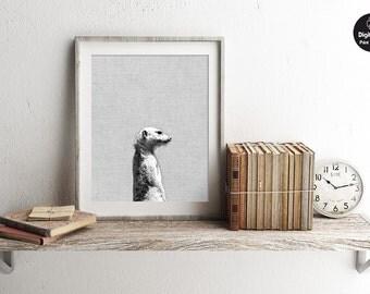 Meerkat - Black And White Photography Art, Scandinavian Design, Printable Wall Art, African Wildlife Print, Animal Photo Wall Decor