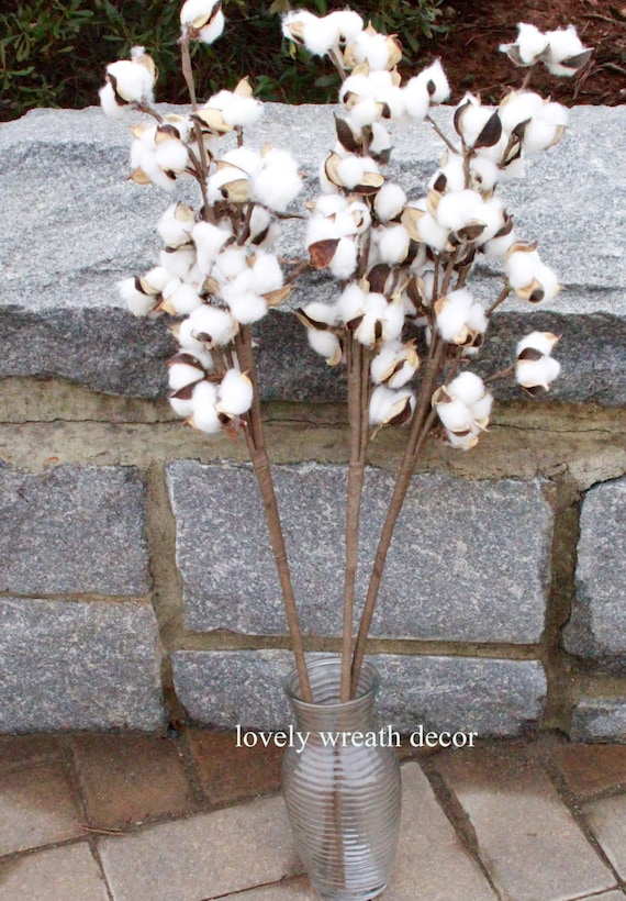 3 Cotton branches ,Cotton boll stalks ,Faux Cotton bolls , Cotton boll stem, Country Rustic bolls stems , Cotton sprays