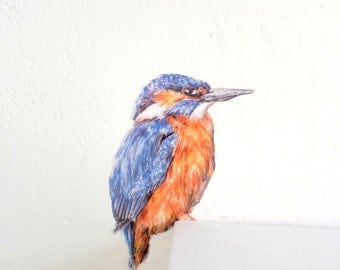 Kingfisher wall sticker, kingfisher gifts, bird home decor, bird decals, kingfisher wall decor, light switch decals, kingfisher illustration
