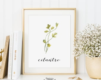Cilantro Printable, Kitchen Art, Herb Printable, Kitchen Printable, Herb Wall Art, 5x7 and 8x10 Printable, Instant Download