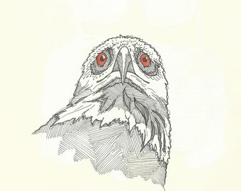 Eagle A4 Print