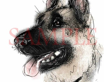 German Shepherd - A4 print