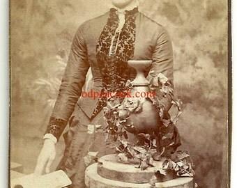Victorian lady photo cdv urn ivy book velvet dress vintage moody sepia