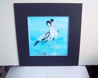 """Bird watercolor """"Pied Avocet Courtship Dance"""""""