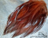 """Feathers Red Hackle Feathers Loose Real Bird Feathers Natural Plumage Eco Rhode Island Red Rooster 25 @ 3"""" - 3.5"""" / RIR9 (Gallus domesticus)"""