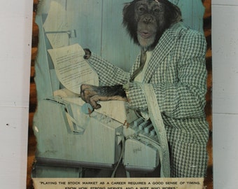 VINTAGE 1975 chimp stock market WALL STREET wooden wall art