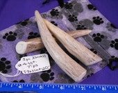 3 Piece X-Small Assorted Deer Antler Tips Dog Chews for Moderate Chewers ,F3pxsat-255