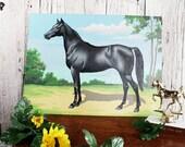Vintage Paint by Numbers Black Horse, Thoroughbred, Morgan, Black Mare, Black Gelding
