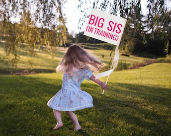 "BIG SIS Sign Pregnancy Announcement ""Big Sis In Training"" Handcrafted Baby Announcement 