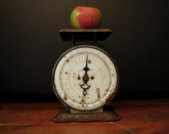 Antique / Vintage Pelouze Kitchenette Family Scale / Gray Scale / Rustic Scale / Farmhouse Decor