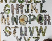 Botanical Woodland Alphabet Archival Watercolor Print by Sarah Rose Storm