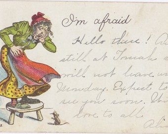 I'm Afraid- 1900s Antique Postcard- Frightened By Mouse- Screaming Woman- Edwardian Humor- Weird Art Comic- Paper Ephemera- Used